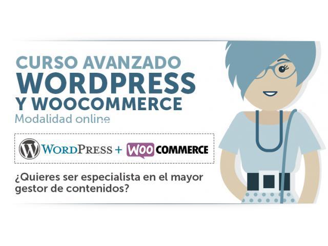 curso wordpress en san isidro