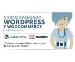 curso wordpress en san isidro