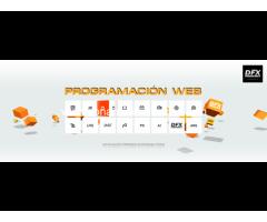 Desarrollo de sistemas web