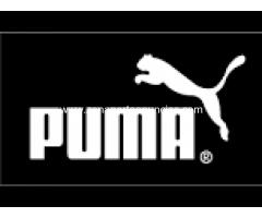 Merchandising Puma